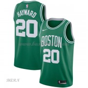 Barn NBA Tröja Boston Celtics 2018 Gordon Hayward 20# Icon Edition..