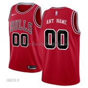 Barn NBA Tröja Chicago Bulls 2018 Icon Edition