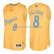 Denver Nuggets Basketkläder 2016 Danilo Gallinari 8# NBA Jultröja..