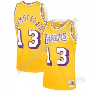 Barn NBA Tröja Los Angeles Lakers 1971-72 Wilt Chamberlain 13# Guld Hardwood Classics Swingman..