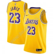Los Angeles Lakers Basket Tröja 2019-20 LeBron James 23# Guld Icon Edition Swingman..
