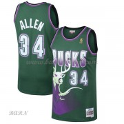 Barn NBA Tröja Milwaukee Bucks 1996-97 Ray Allen 34# Green Hardwood Classics..