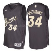 Milwaukee Bucks Basketkläder 2016 Giannis Antetokounmpo 34# NBA Jultröja..